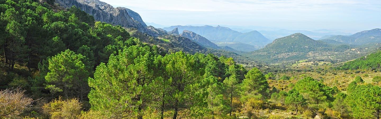 Wandelvakanties Spanje